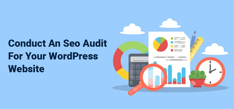 SEO Audit on Your WordPress Site